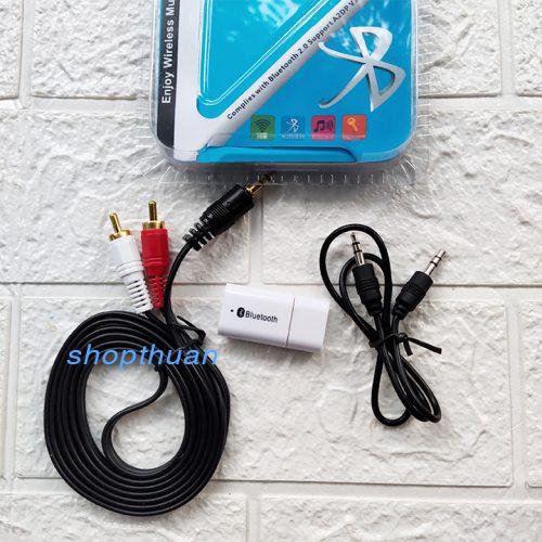 USB Bluetooth PT810 + Dây AV - Biến Loa Thường Thành Loa Bluetooth